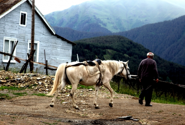 Abkhazia - Caucasus 008