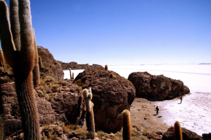 Bolivia 092 - Salar de Uyuni - Incahuasi
