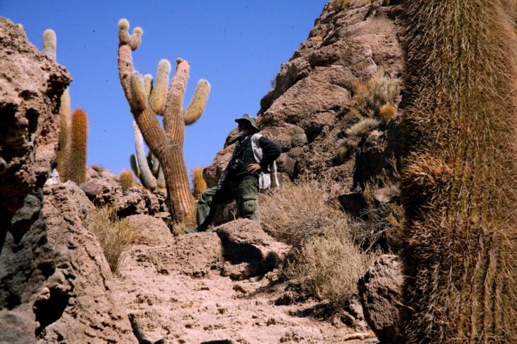 Bolivia 094 - Salar de Uyuni - Incahuasi