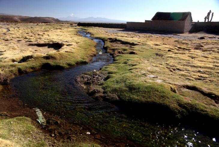 Bolivia - Itinerary La Paz-Sajama-Coipasa 095 / Julo