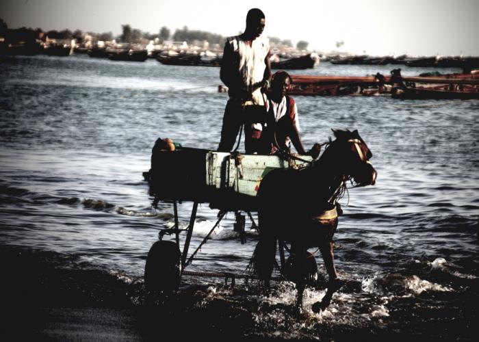 Senegal - Joal-Fadiouth 096 - Joal