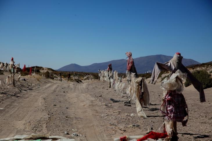 Bolivia - Itinerary La Paz-Sajama-Coipasa 101