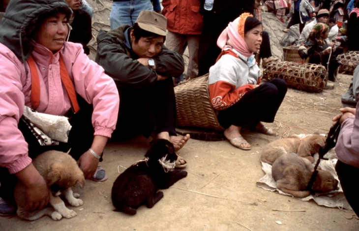 Vietnam - Northern ethnic minorities 104 - Bac Ha