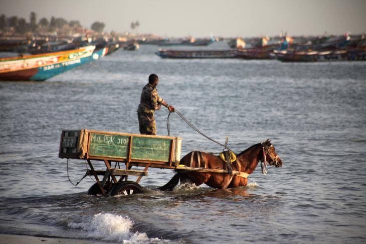 Senegal - Joal-Fadiouth 103 - Joal
