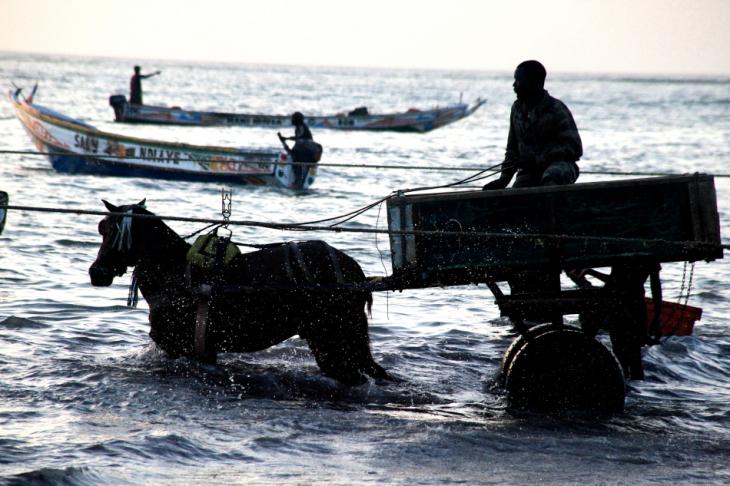 Senegal - Joal-Fadiouth 113 - Joal