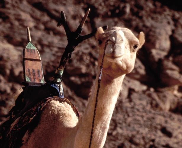 Libya - Sahara desert 125
