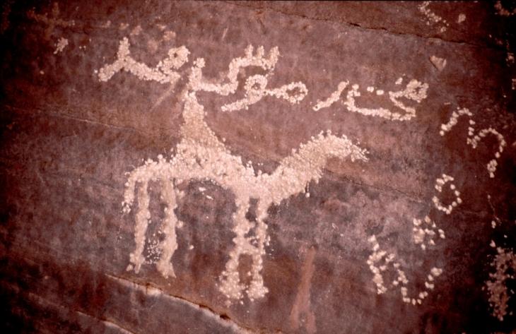 Libya - Sahara desert 137