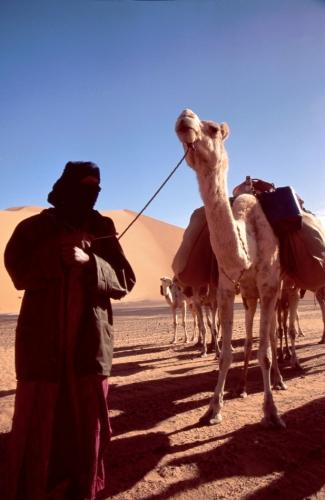 Libya - Sahara desert 201
