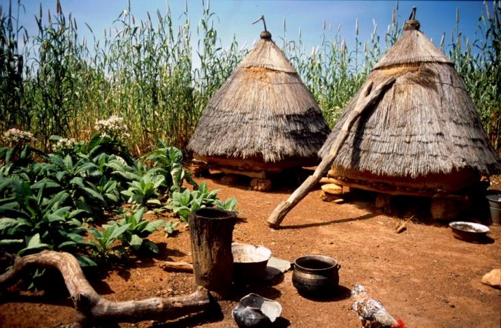 Benin - Betamaribe 24