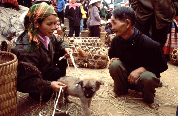 Vietnam - Northern ethnic minorities 088 - Bac Ha