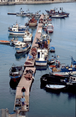 Algeria - Algiers 005 - The port