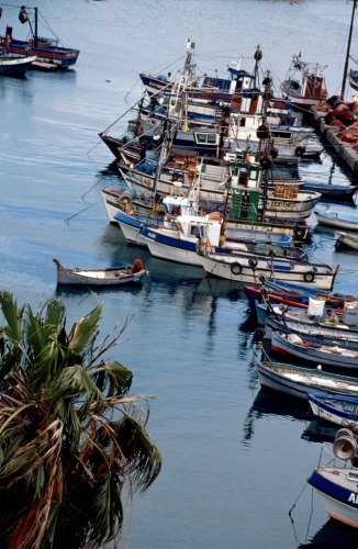 Algeria - Algiers 006 - The port