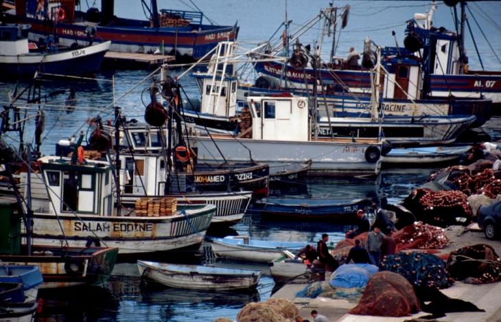Algeria - Algiers 008 - The port