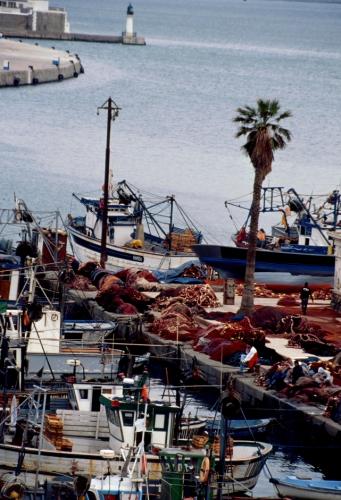 Algeria - Algiers 009 - The port