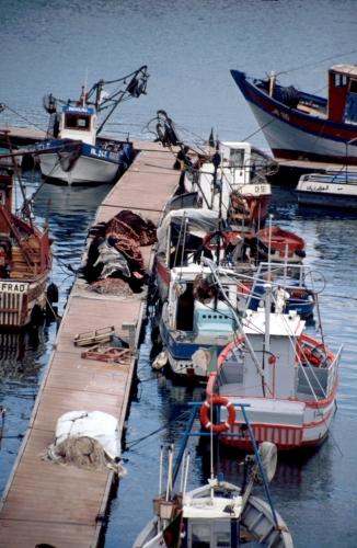 Algeria - Algiers 010 - The port