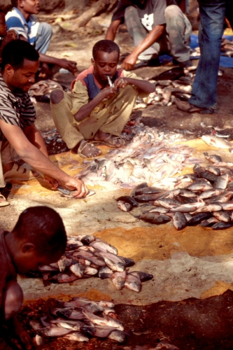 Ethiopia - South 017 - Awasa