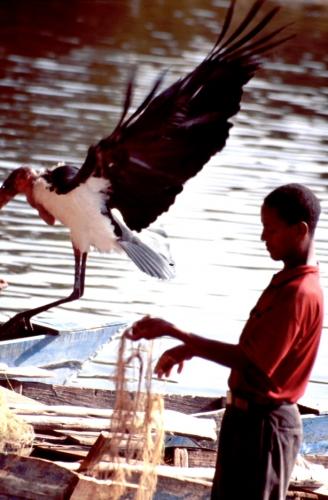 Ethiopia - South 021 - Awasa