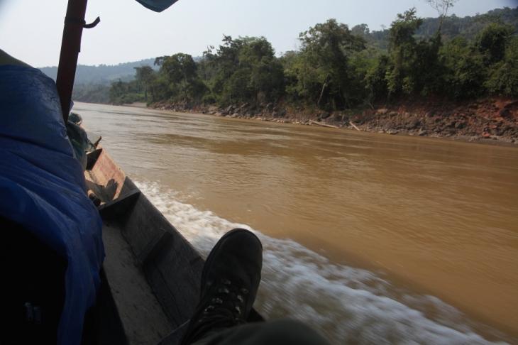 Bolivia - Amazonas 027