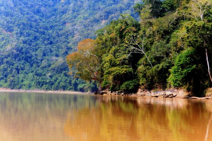 Bolivia - Amazonas 031