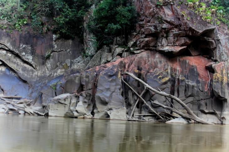 Bolivia - Amazonas 037