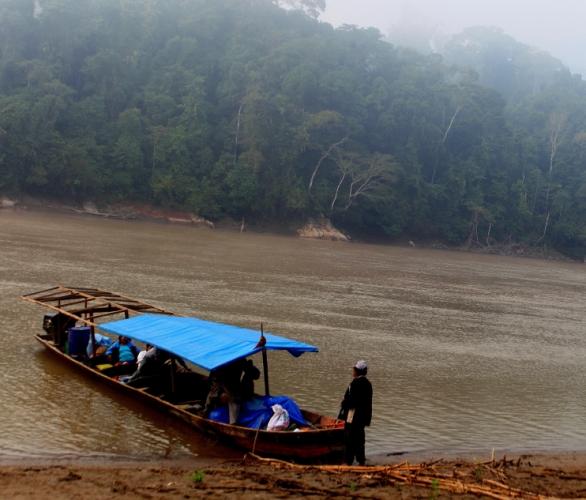 Bolivia - Amazonas 049