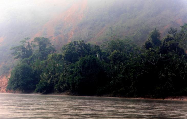 Bolivia - Amazonas 050