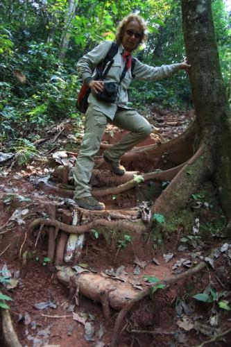 Bolivia - Amazonas 062