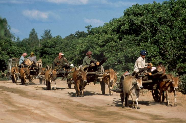 Central Cambodia 059
