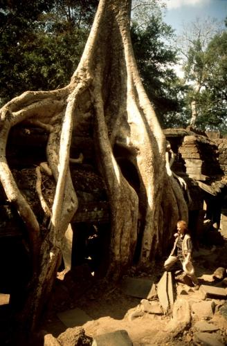 Cambodia - Angkor 052 - Ta Phrom
