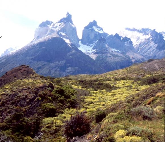 Chile - Torres del Paine 12