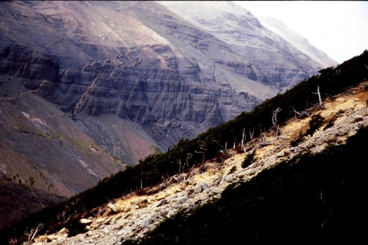 Chile - Torres del Paine 56