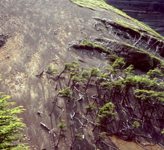 Chile - Torres del Paine 64