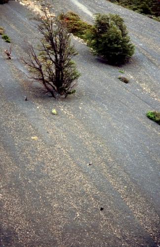 Chile - Torres del Paine 69