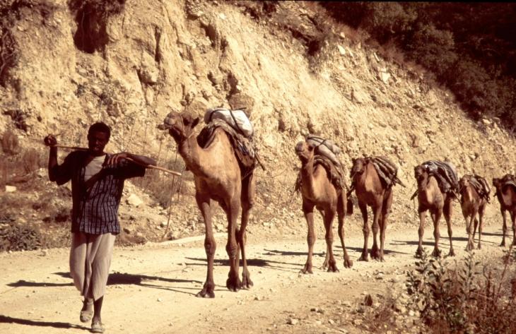 Ethiopia - Danakil 001