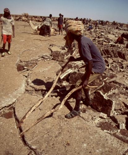 Ethiopia - Danakil 116 - Asale