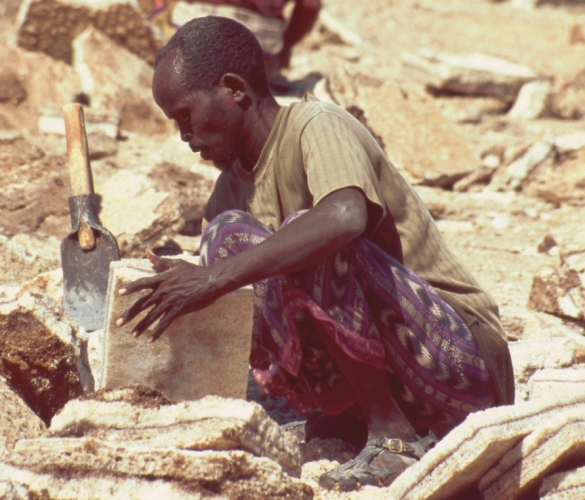 Ethiopia - Danakil 117 - Asale