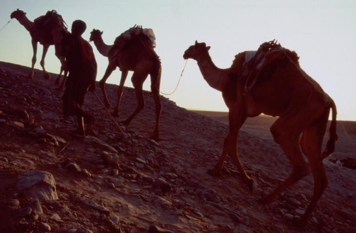 Ethiopia - Danakil 012