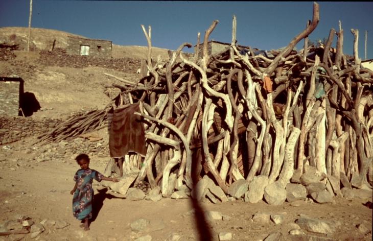 Ethiopia - Danakil 136 - Berahile