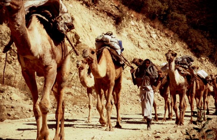 Ethiopia - Danakil 002