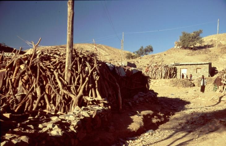 Ethiopia - Danakil 022 - Berahile