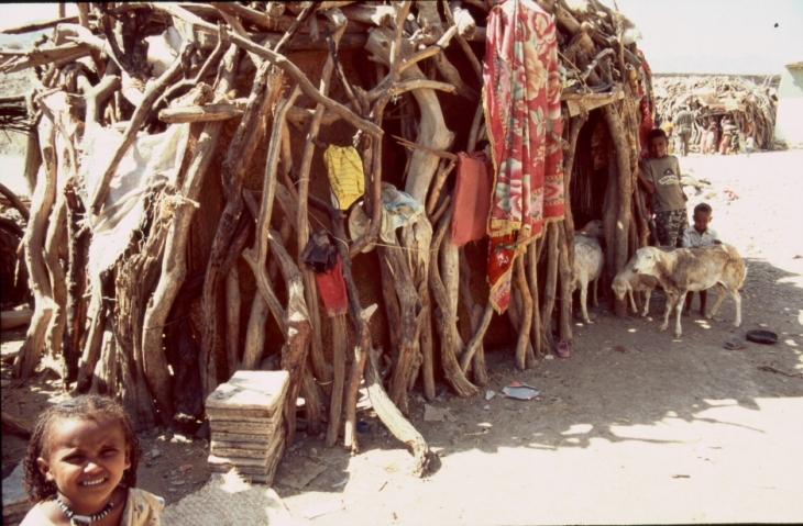 Ethiopia - Danakil 024 - Berahile