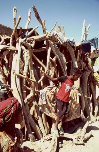 Ethiopia - Danakil 026 - Berahile