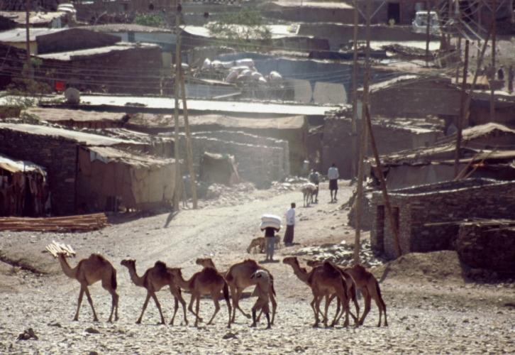 Ethiopia - Danakil 029 - Berahile