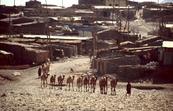 Ethiopia - Danakil 031 - Berahile