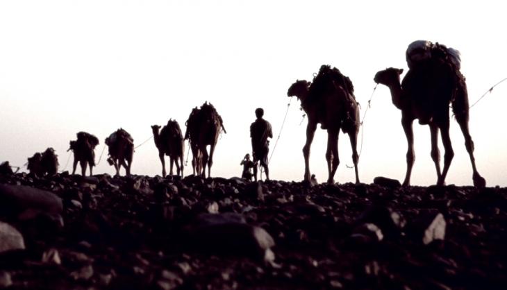 Ethiopia - Danakil 037 - Hamadela