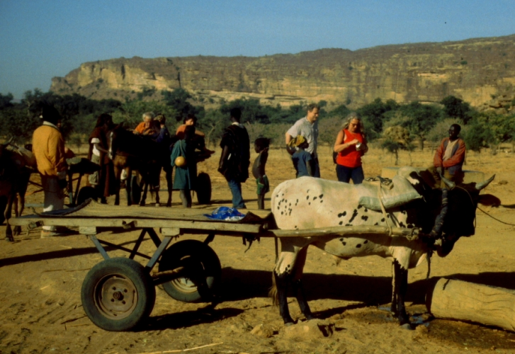 Mali - Dogon tribe 058 - On the road to Teli village