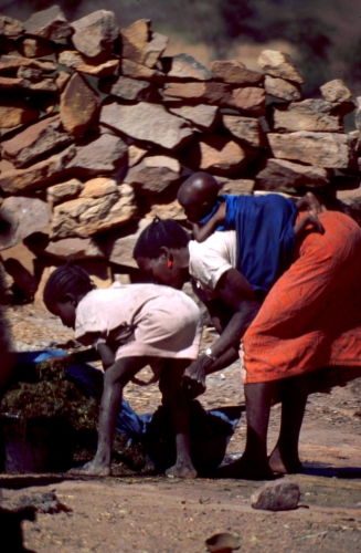 Mali - Dogon tribe 082 - Teli village