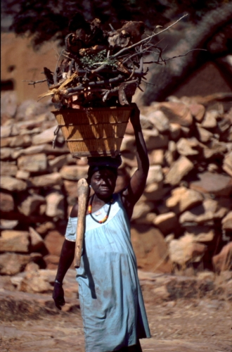Mali - Dogon tribe 086 - Teli village