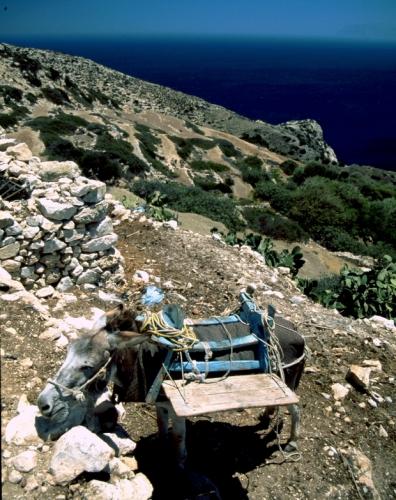 Greece - Donousa 051