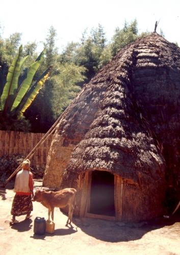 Ethiopia - South 039 - Dorze village